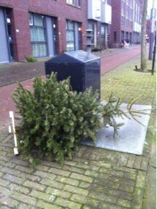 Natal trash