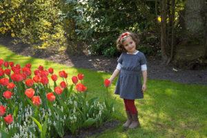 Juju e as tulipas do Keukenhof