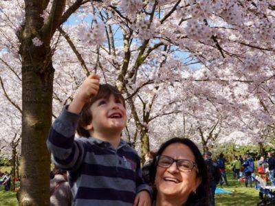 A chegada da vovó e a visita ao jardim das cerejeiras