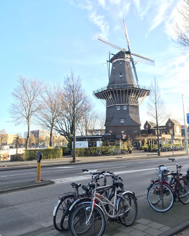 Passo a passo para morar na Holanda