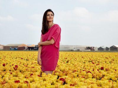 Campo de tulipas na Holanda
